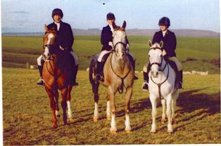 PENTATHLON TEAM TRAINING HORSES - Mouse Berry